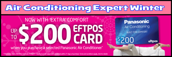 Heating and Cooling Winter promotion AC Expert