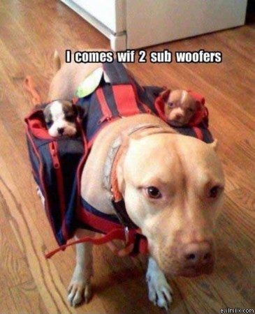 Sub Woofer Air Conditioning Expert